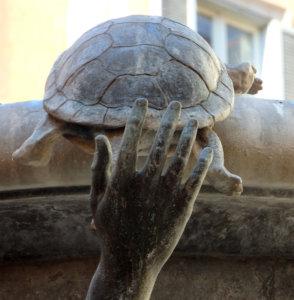 roma fontana delle tartarughe piazza mattei